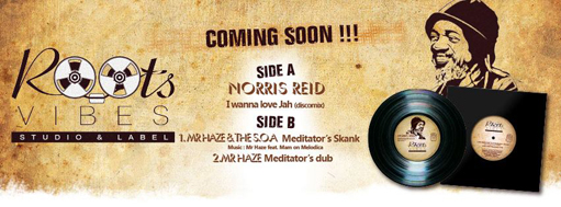 "Mr Haze feat. Norris Reid & The Sons Of Africa - I Wanna Love Jah / Meditator's Skank - 12"" Roots Vibes Production"