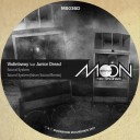 12inch Moonshine Recordings MS036