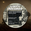 7inch Livity Records LIVR7002