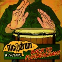 Nicodrum - Back to Fundehchan !