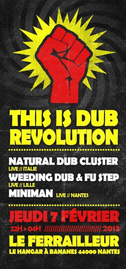 This is Dub Revolution
