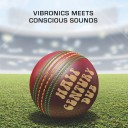 image version post-thumbnail: Vibronics meets Conscious Sounds - Half Century Dub