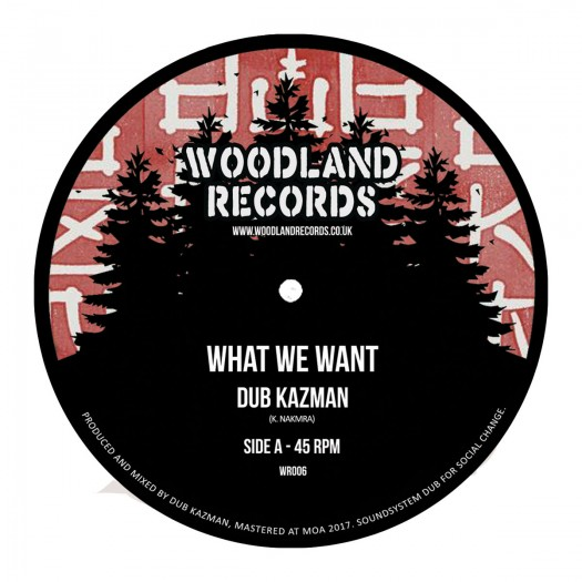 Dub Kazman - What We Want