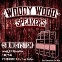 woody wood speacker  @ Officine 2.0