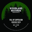 "Conscious Youth - Fall Of Capitalism - 7"" Woodland Records WR002"