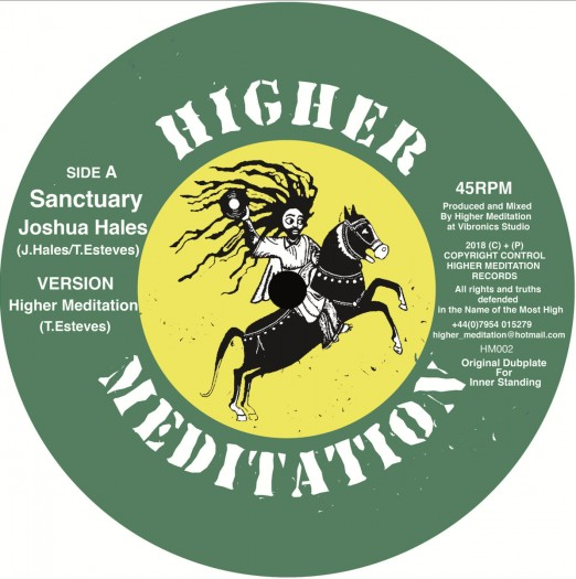 Higher Meditation feat. Joshua Hales - Sanctuary