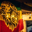 Rototom Launch Party Mallorca